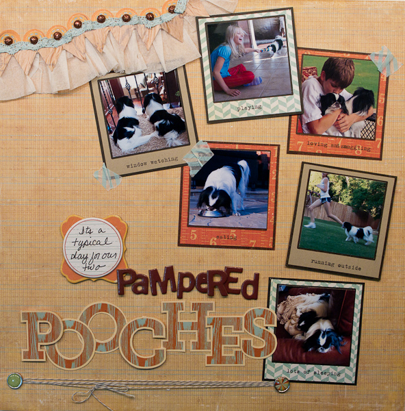 Pampered Pooches-1