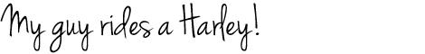 Harley_header