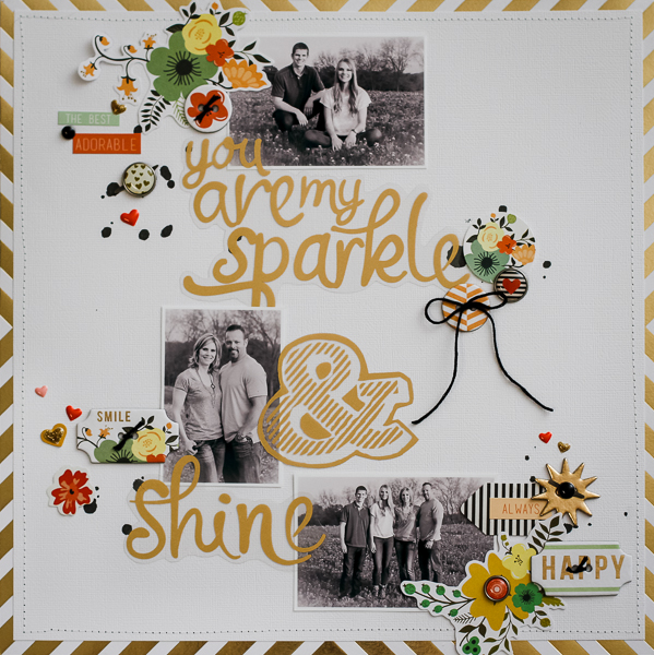 SparkleAndShine_DianePayne-1
