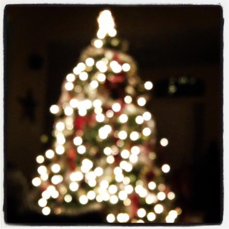 Tree_DianePayne-1